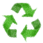 4 Easy Ways to Recycle You Need to Know