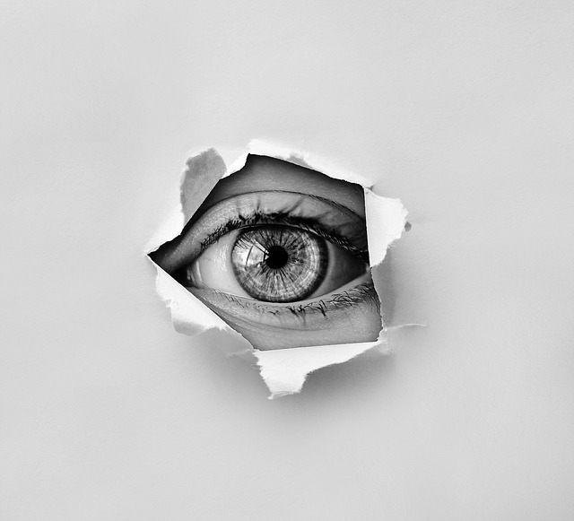 eye, look, spy