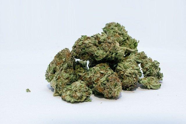 marijuana, cannabis, weed