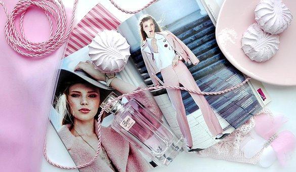 Rosa, Revista, Brillo, Zephyr, Sweet