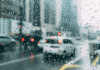 The Most Common Causes of Road Traffic Accidents